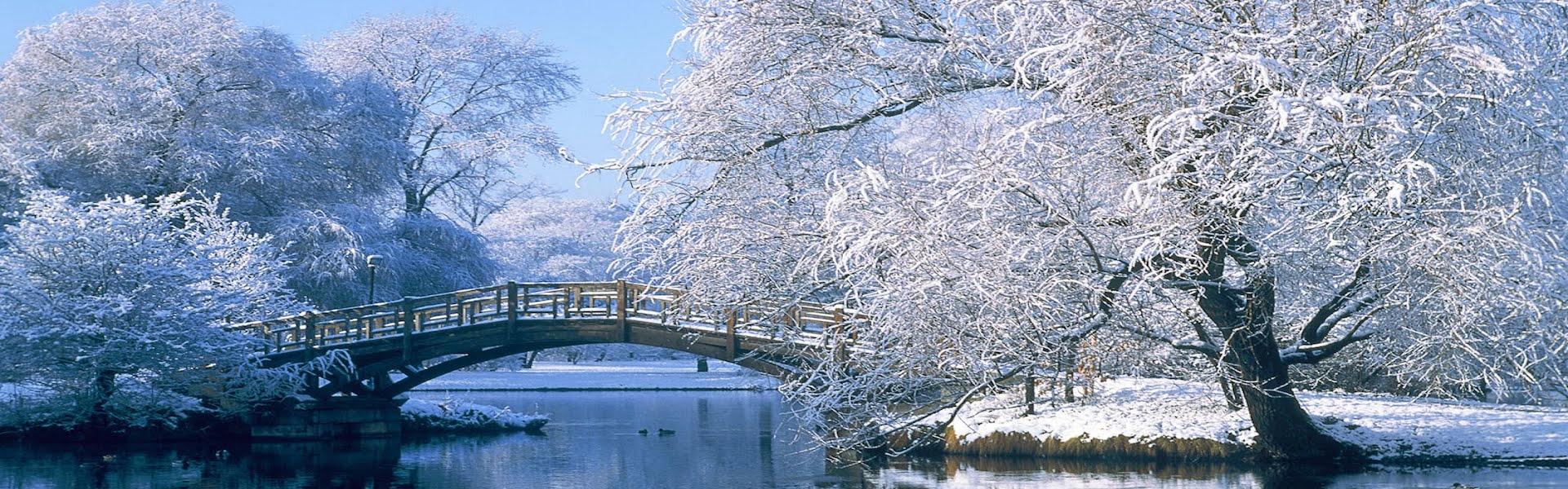 Winter-Background