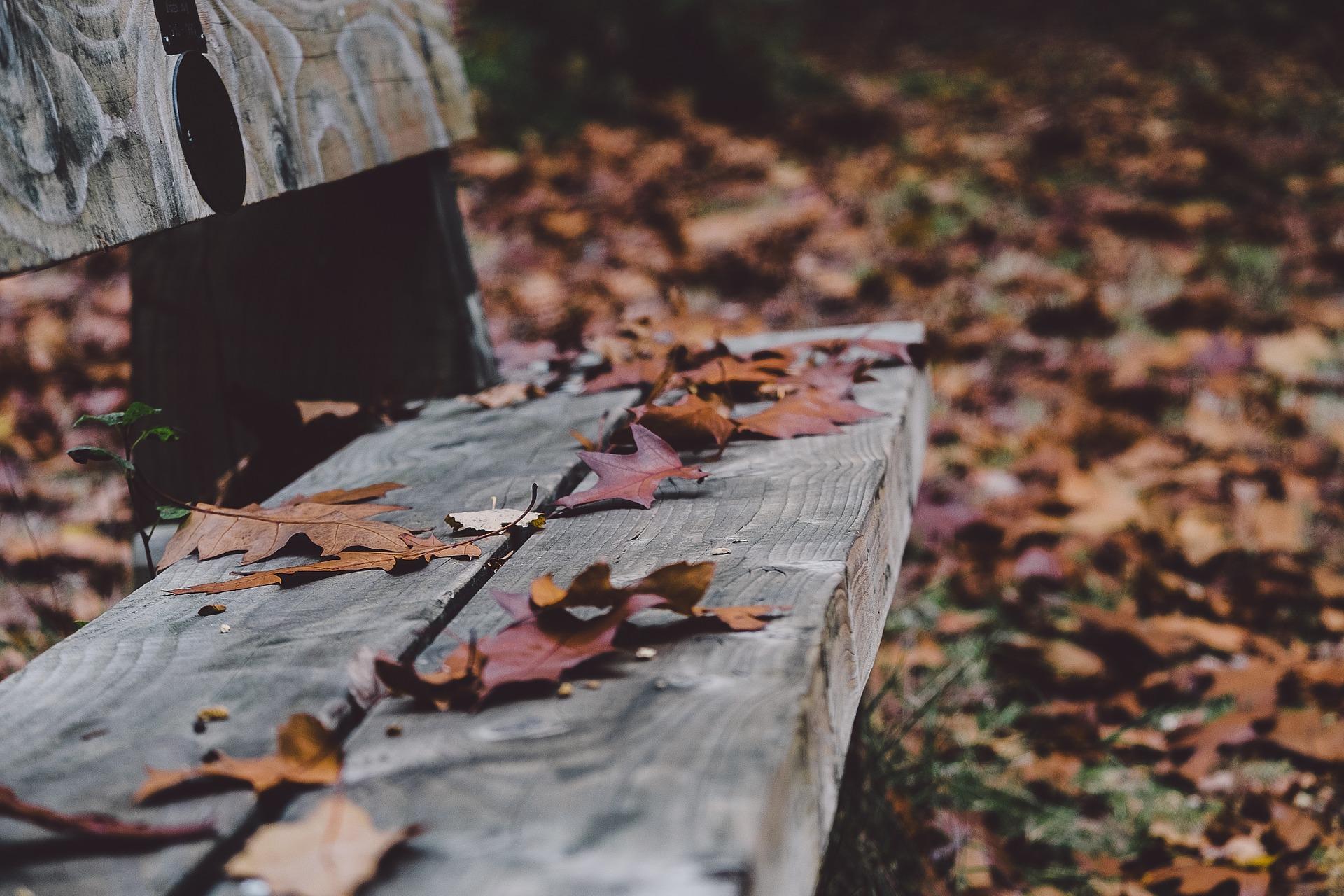 bench-1031353_1920